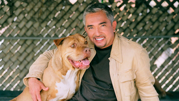 Cesar Millan joins The Weekly